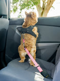2PET® Adjustable Dog Seat Belt Strap | 2 Pack Choose Color