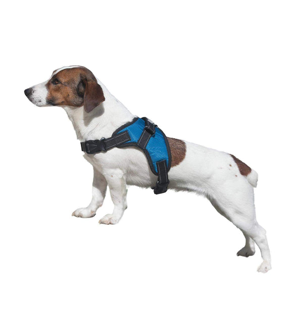 2PET® No Pull Dog Harness With Padded Mesh