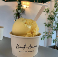 Brook Avenue Artisan Gelato 500ml tub