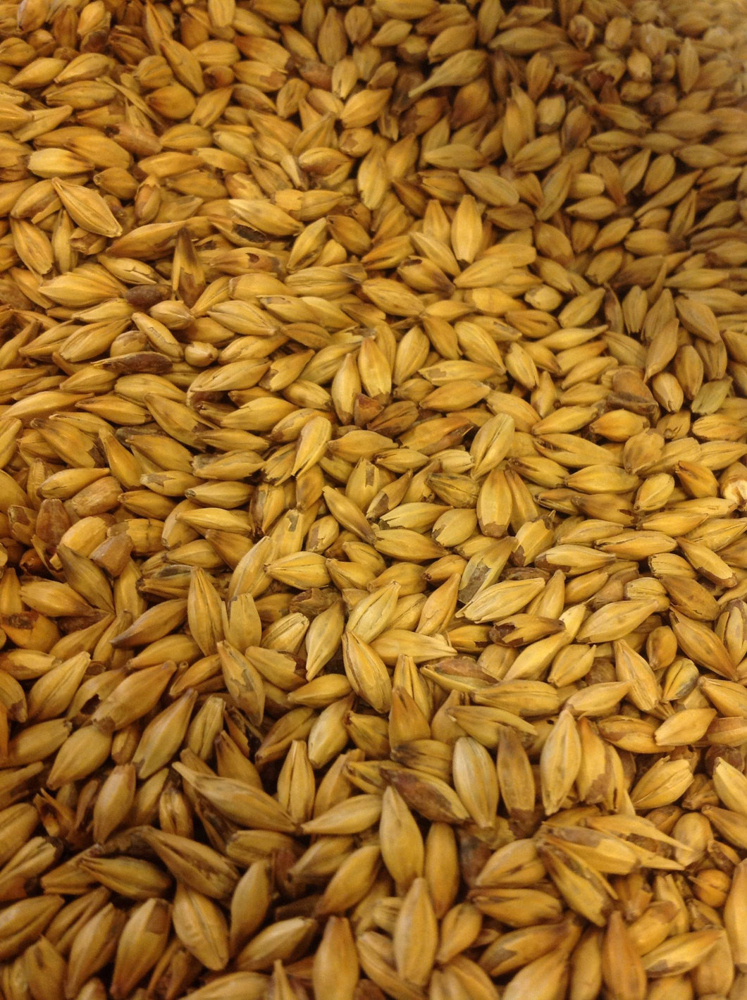 Weyermann Carared Specialty Malt