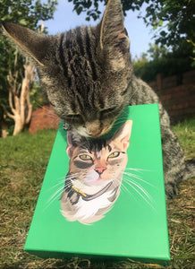 Mittens (@thecomedycat) Pet Jigsaw