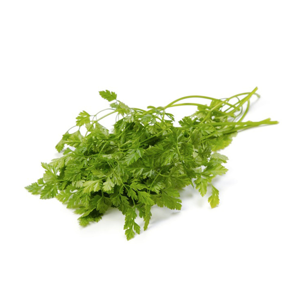 Next-Day Fresh, Chervil
