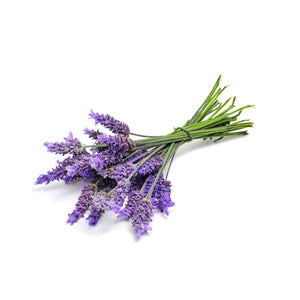 Load image into Gallery viewer, Next-Day Fresh, Lavender