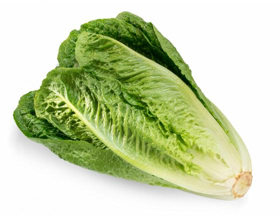 Romaine Lettuce - 1 head