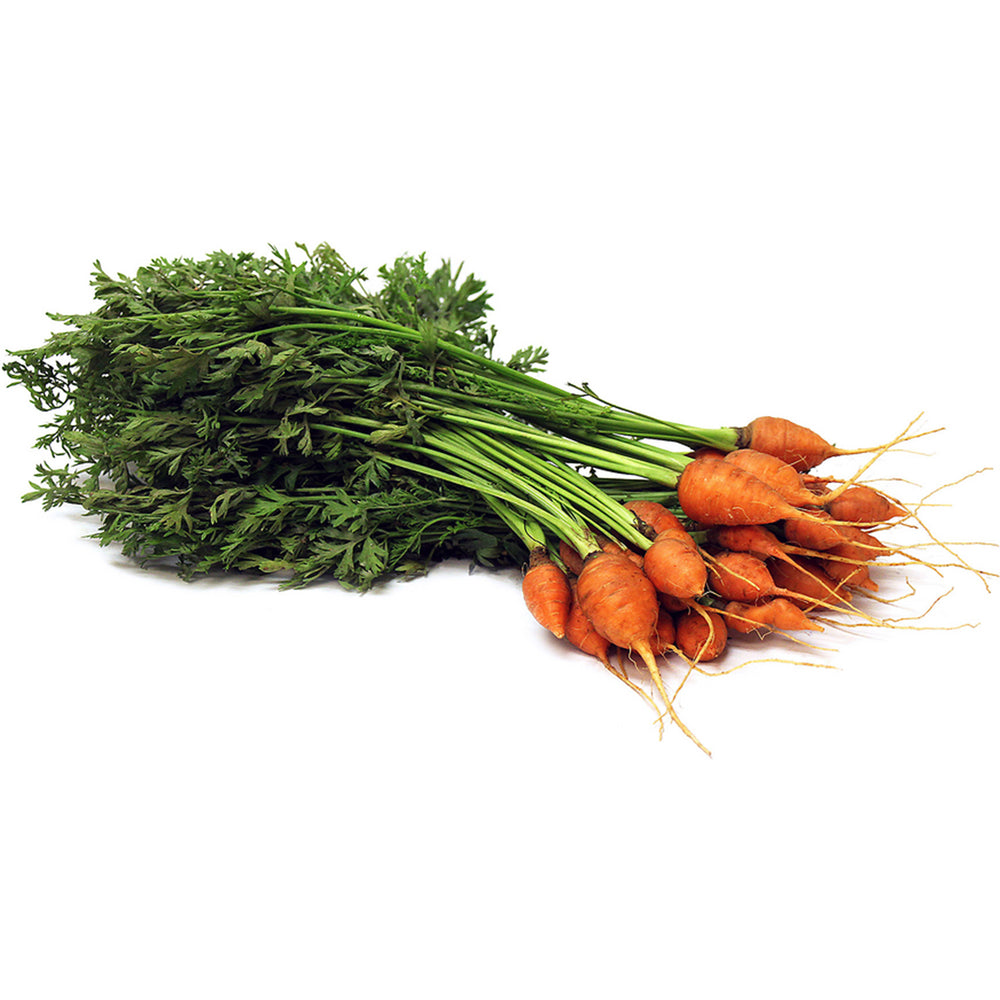 Next-Day Fresh, Thumbelinna Carrots - 1 bunch