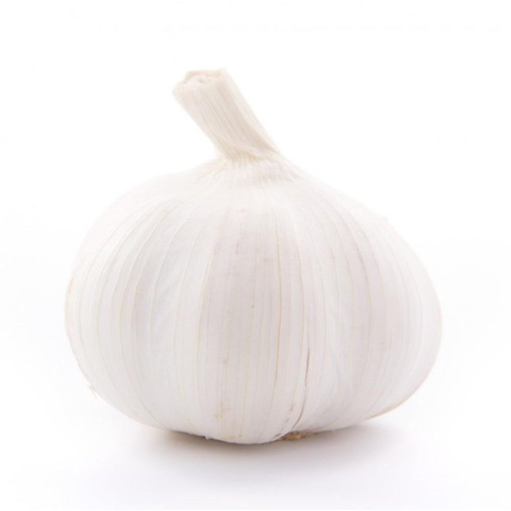 Load image into Gallery viewer, Next-Day, Garlic - single