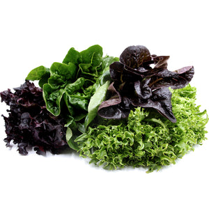 Next-Day Fresh, Artisan Lettuce - 1 bunch