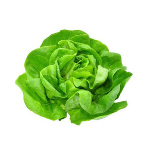 Load image into Gallery viewer, Next-Day Fresh, Hydroponic Lettuce - 1 piece