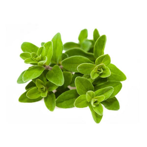 Load image into Gallery viewer, Next-Day Fresh, Marjoram