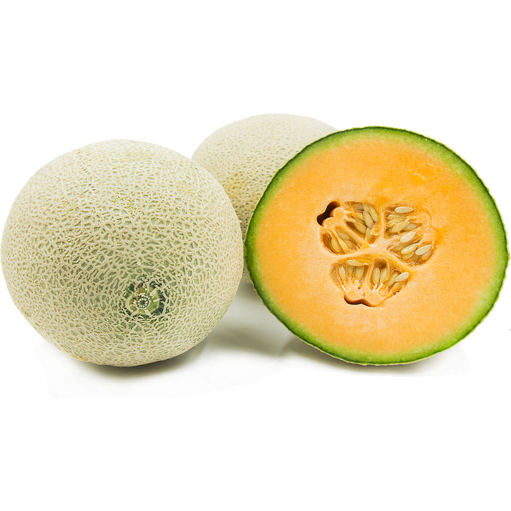 Next-Day, Jumbo Cantaloupe Melon