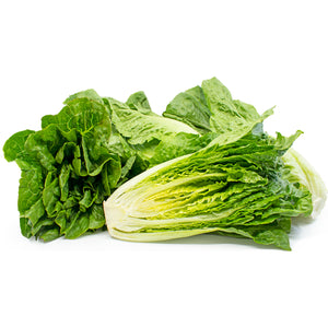 Next-Day Fresh, Romaine - 1 piece