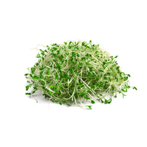 Load image into Gallery viewer, Next-Day Fresh, Alfalfa Sprouts