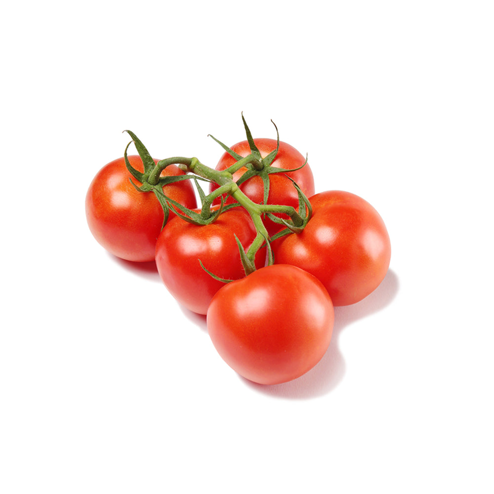 Red Vine Tomato - single