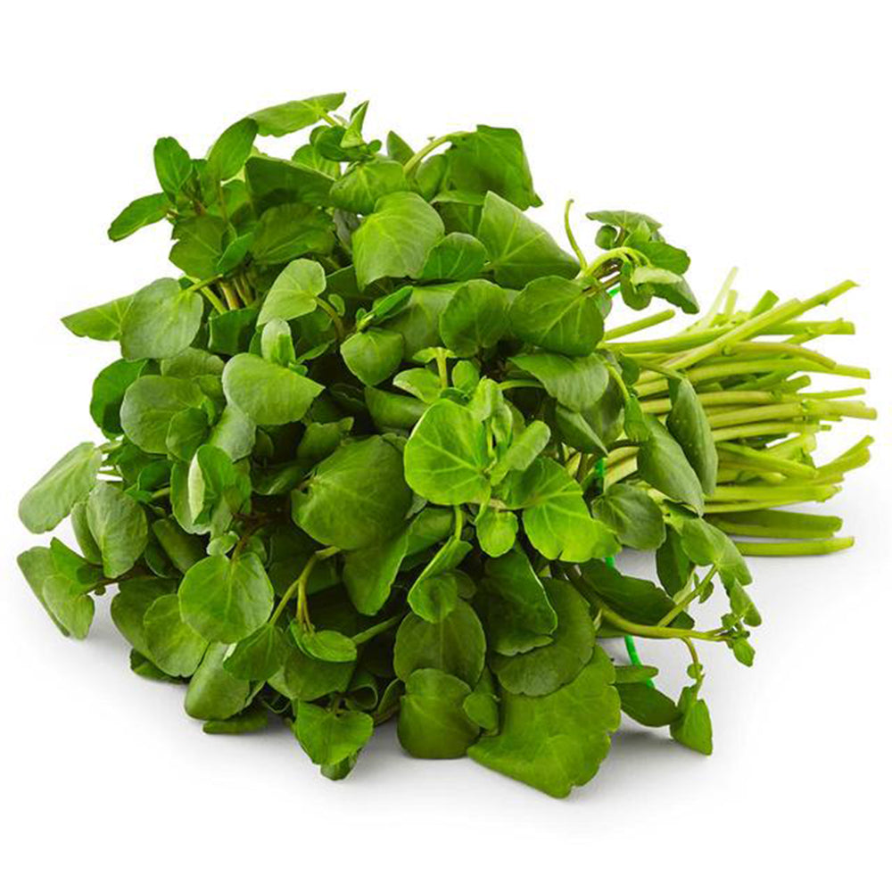 Next-Day Fresh, Watercress - 1 bunch