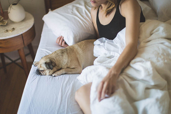 woman in bed with her pug
