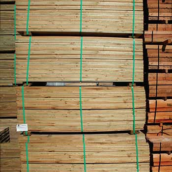 Treated Pine Fence palings 165 x 12mm Set Lengths