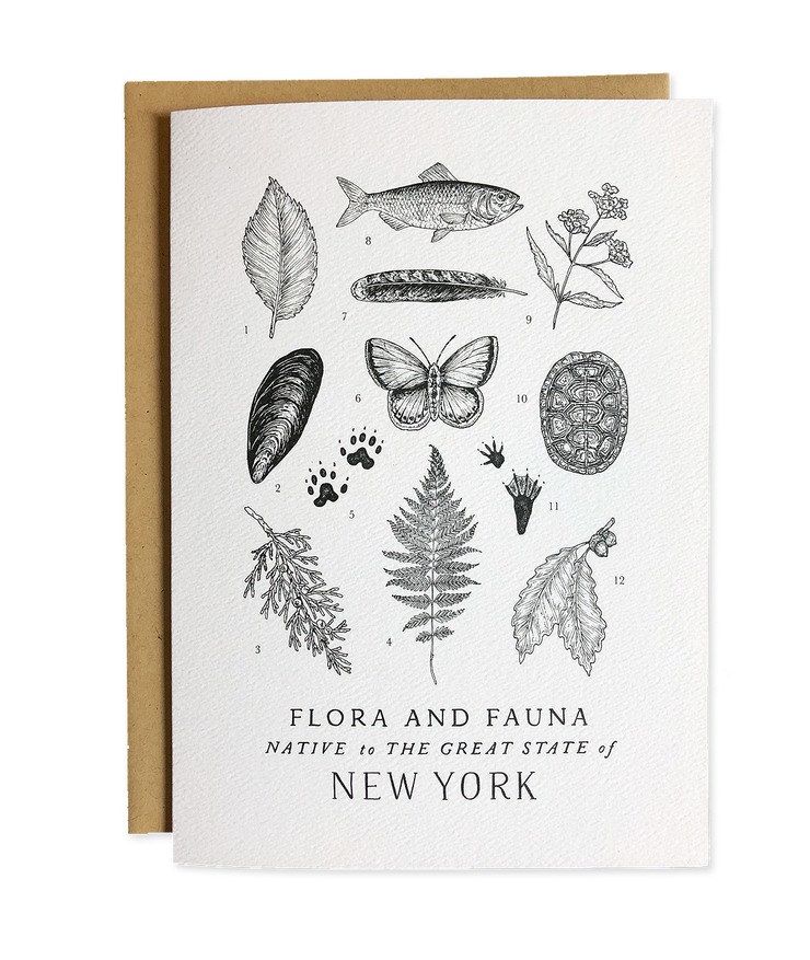 Flora and Fauna Card