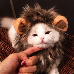 Funny Cute Pet Cat Costume Lion Wig - i-Deals Store