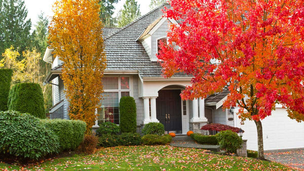 How to Reset Your Home for Fall