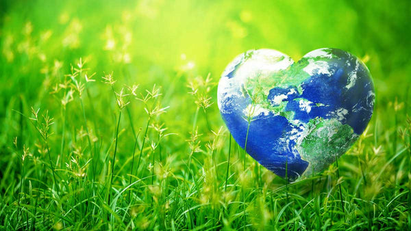 Earth Day - Keeping Your Family and the World Safe from Toxins