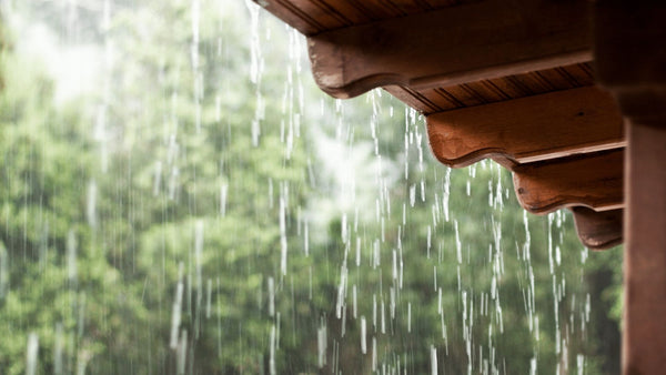 April Showers and Cleaning Out Your Gutters