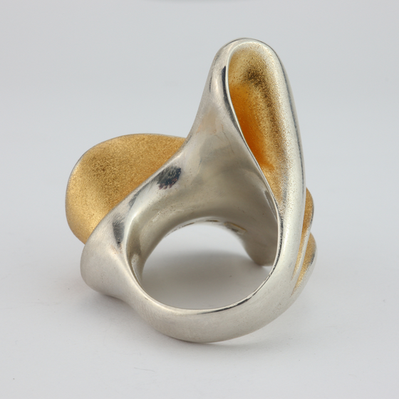 'Sundance' Ring in Silver and Accents of Gold.