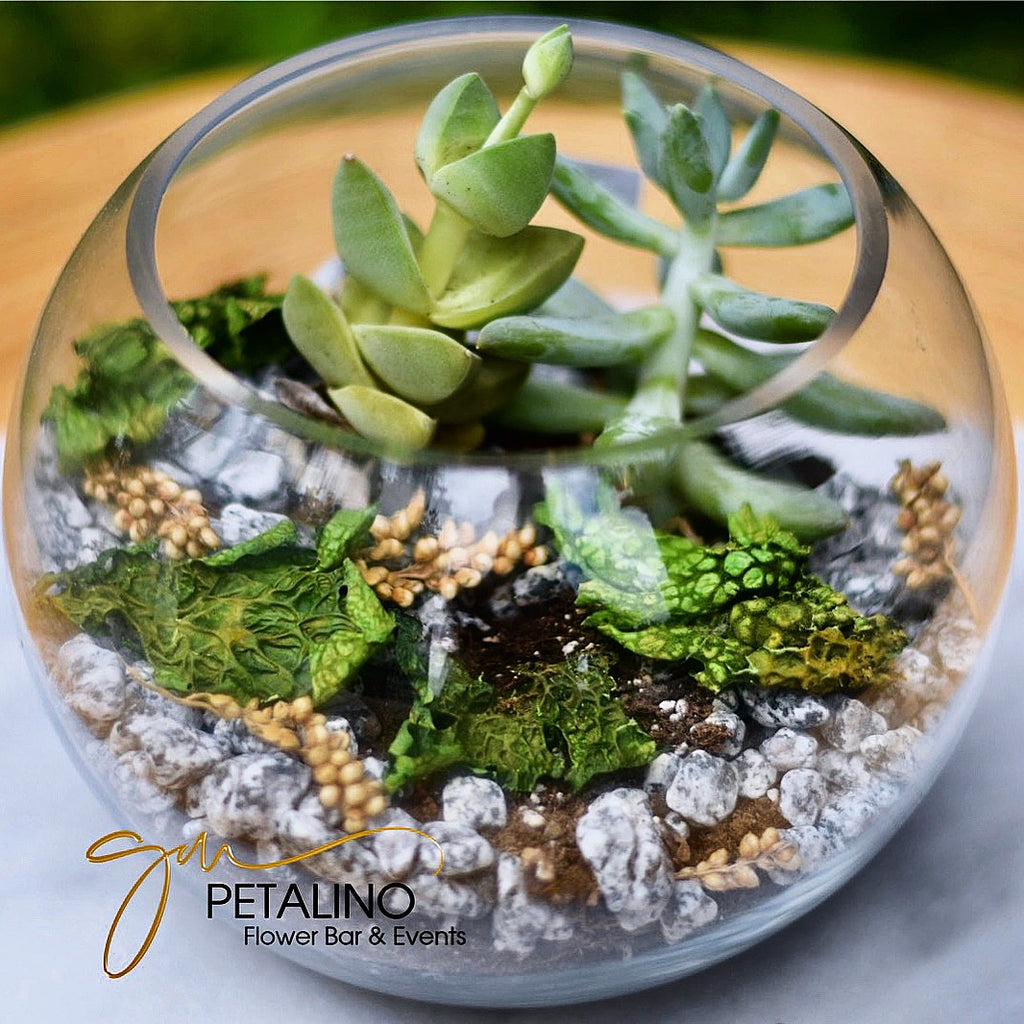 Succulent terrarium by Petalino Flower Bar & Events - North Vancouver
