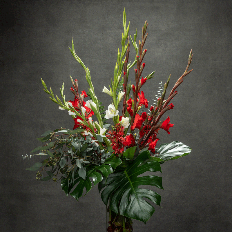 Colourful Gladiolus flower arranged in tall vase with tropical leaves - Petalino Flower Bar