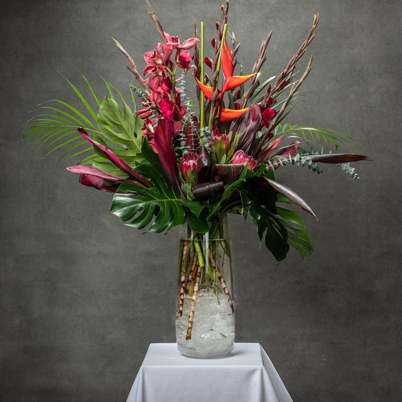 Birds of Paradise, Glads and Red Orchids and portia arranged  in a clear vase with tropical leaves - Petalino Flower Bar