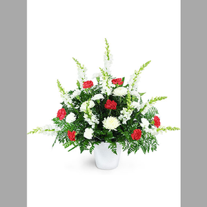Red & white carnation and tall snaps basket of flowers