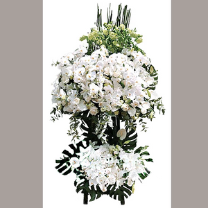 LARGE FUNERAL SPRAY WITH WHITE ORCHIDS