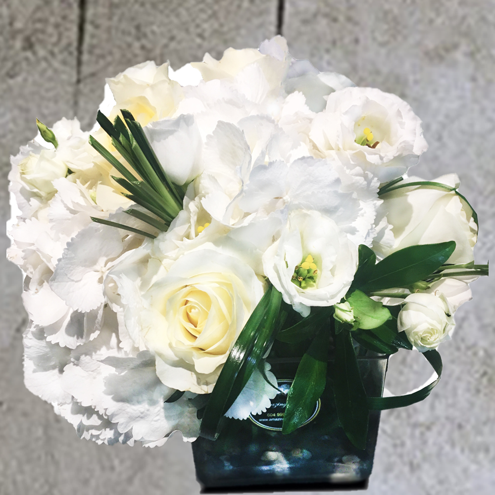WHITE VASE ARRANGEMENT WITH HYDRANGEAS & ROSES