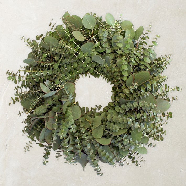 Fresh green silver dollar and baby blue eucalyptus christmas wreath