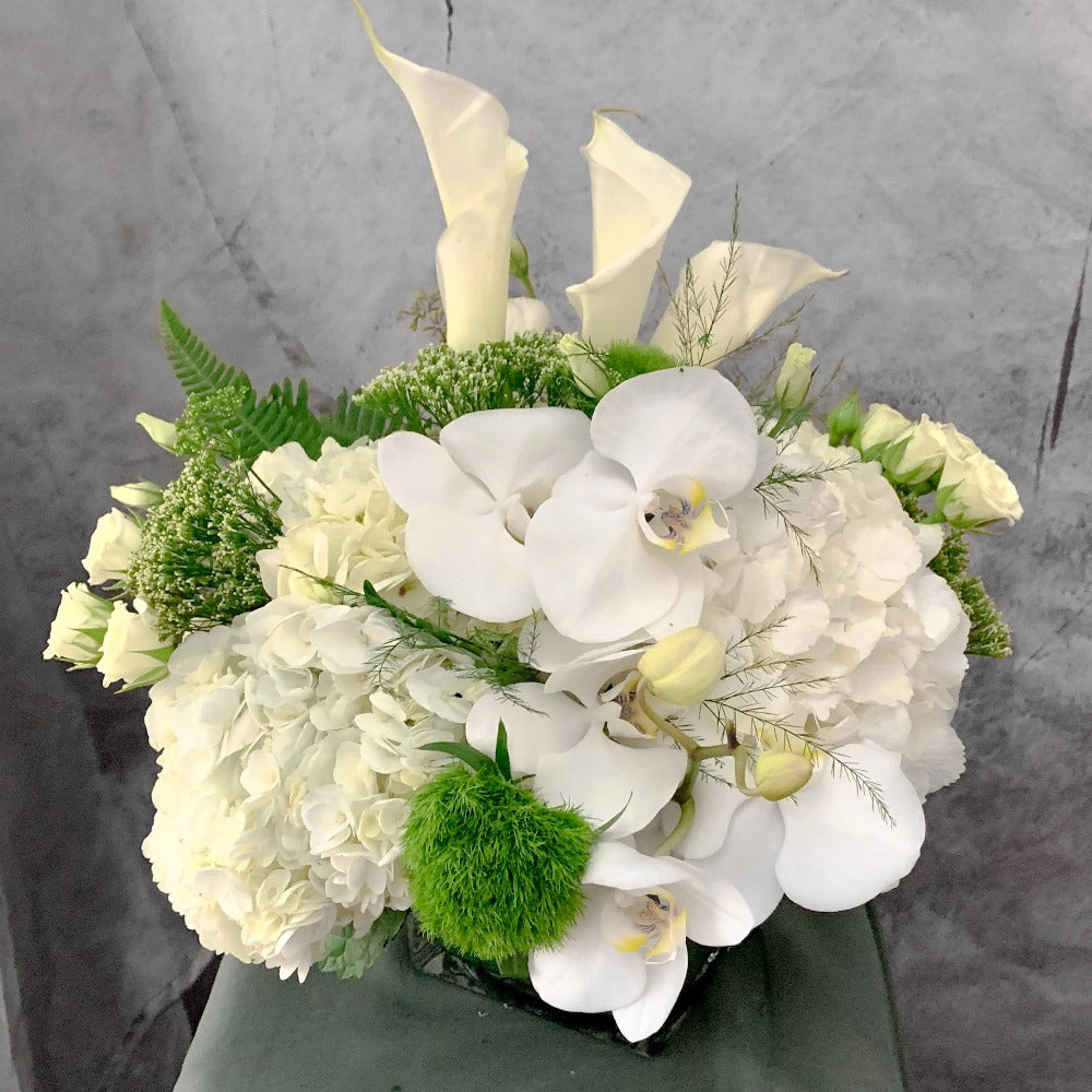 WW-161 PRINCESS - This exquisite mix of white hydrangeas, orchids, lisianthus, calla lilies and spray roses arranged in a square glass vase  Picture is deluxe  colour: white and green | North Vancouver Florist | Petalino Flower Bar & Events