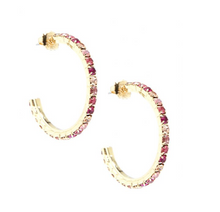 Load image into Gallery viewer, Pink Crystal Hoops