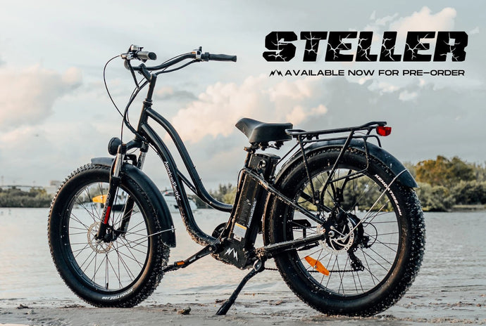 Check out this Spring Arrival! The American-Electric Steller Fat Tire Cruiser!