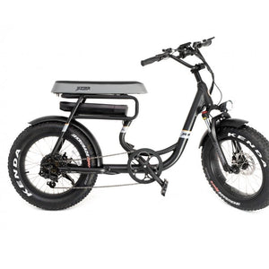 GREENBIKE ELECTRIC MOTION Mule, Fat Tire, Two-Seater, Urban/Beach Cruiser - 500 Watt, 48V - electricbyke.com