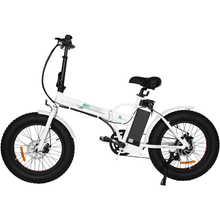 "Load image into Gallery viewer, ECOTRIC 20"" Folding Electric Fat Tire Bike - 500 Watt, 36V - electricbyke.com"