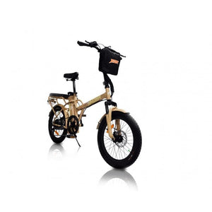 GREENBIKE ELECTRIC MOTION Jager Dune. Two-Seat E-Bike - 350 Watt, 36V - electricbyke.com