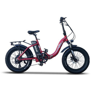 EMOJO, Electric Bike, RAM SS - 750 Watt, 48V - electricbyke.com