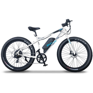 EMOJO, Electric Bike, WILDCAT PRO HD 750, Fat Tire Beach/Trail/Street Cruiser - 750 Watt, 48V - electricbyke.com