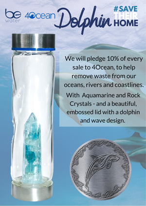 4Ocean Dolphin Collaboration