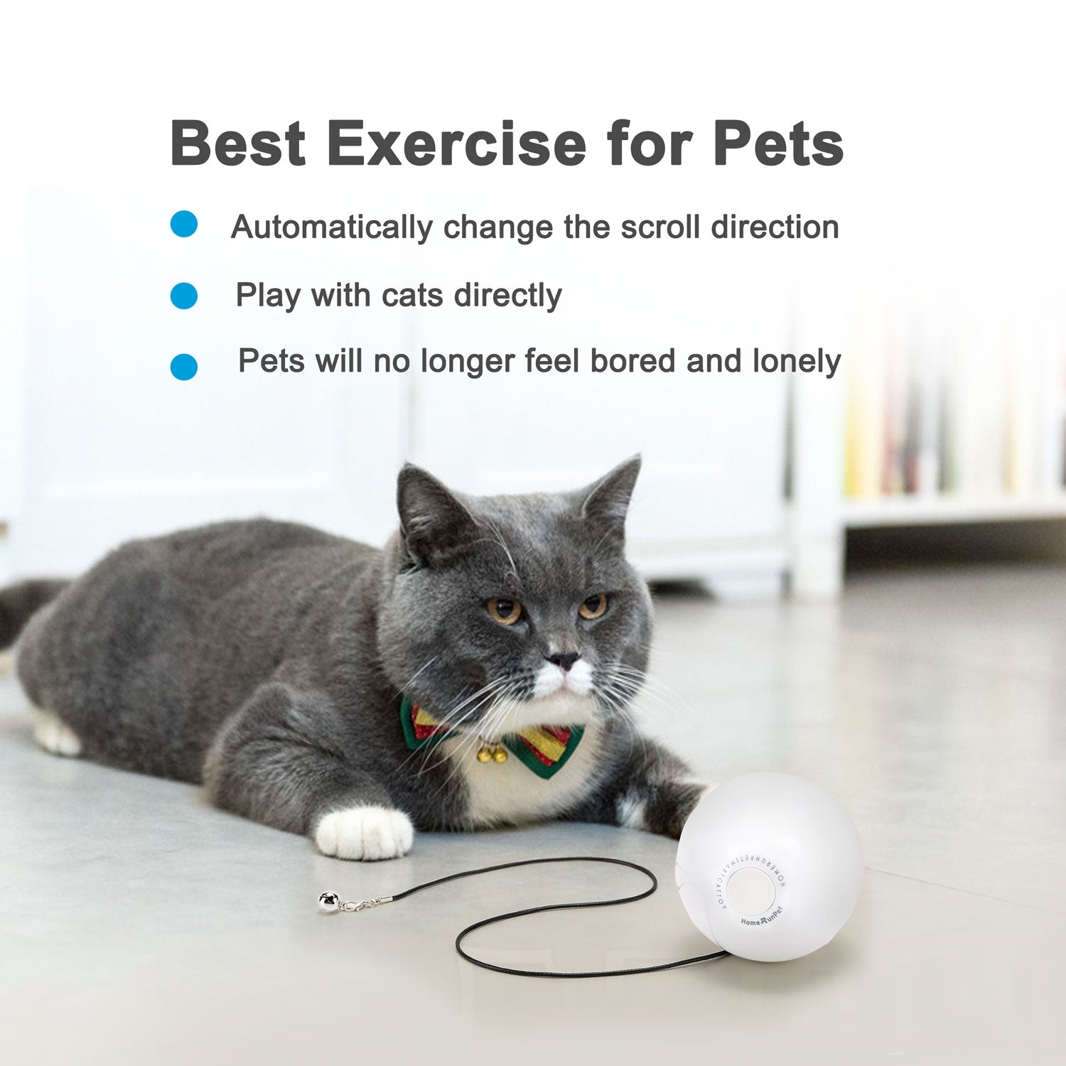 HomeRunPet Cat Toy Ball (Batteries Included)