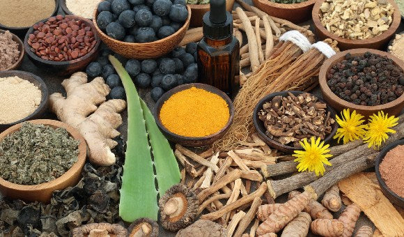 8 Frequently Asked Questions about Adaptogenic Herbs