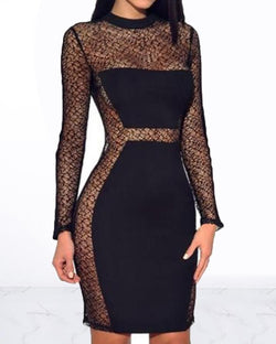 See Through Lace Insert Bodycon Dress