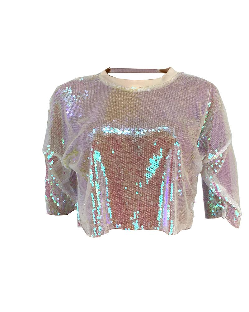 Round Neck Sheer Sequins Top