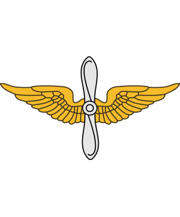 US ARMY AVIATION BRANCH