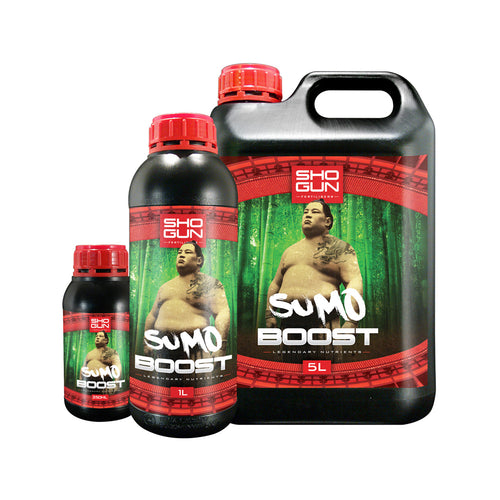Sumo Boost (Shogun)