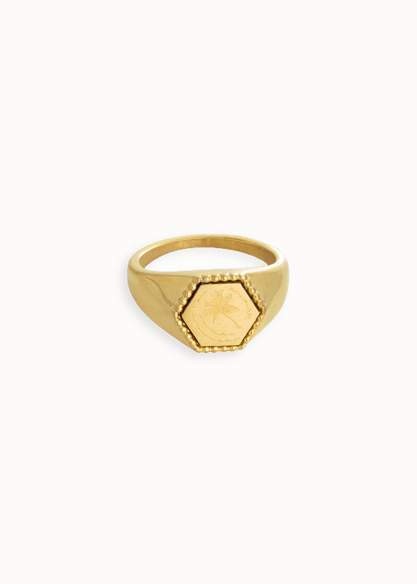 PALM (SP)RINGS| GOLD