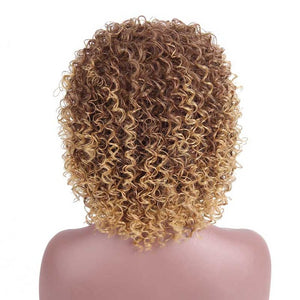 Mixed Brown and other Colors Synthetic Wigs